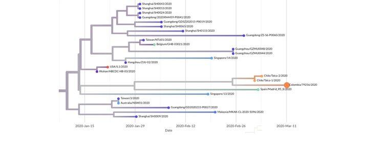 Linajes del SARS-CoV-2. Fuente: INS Colombia
