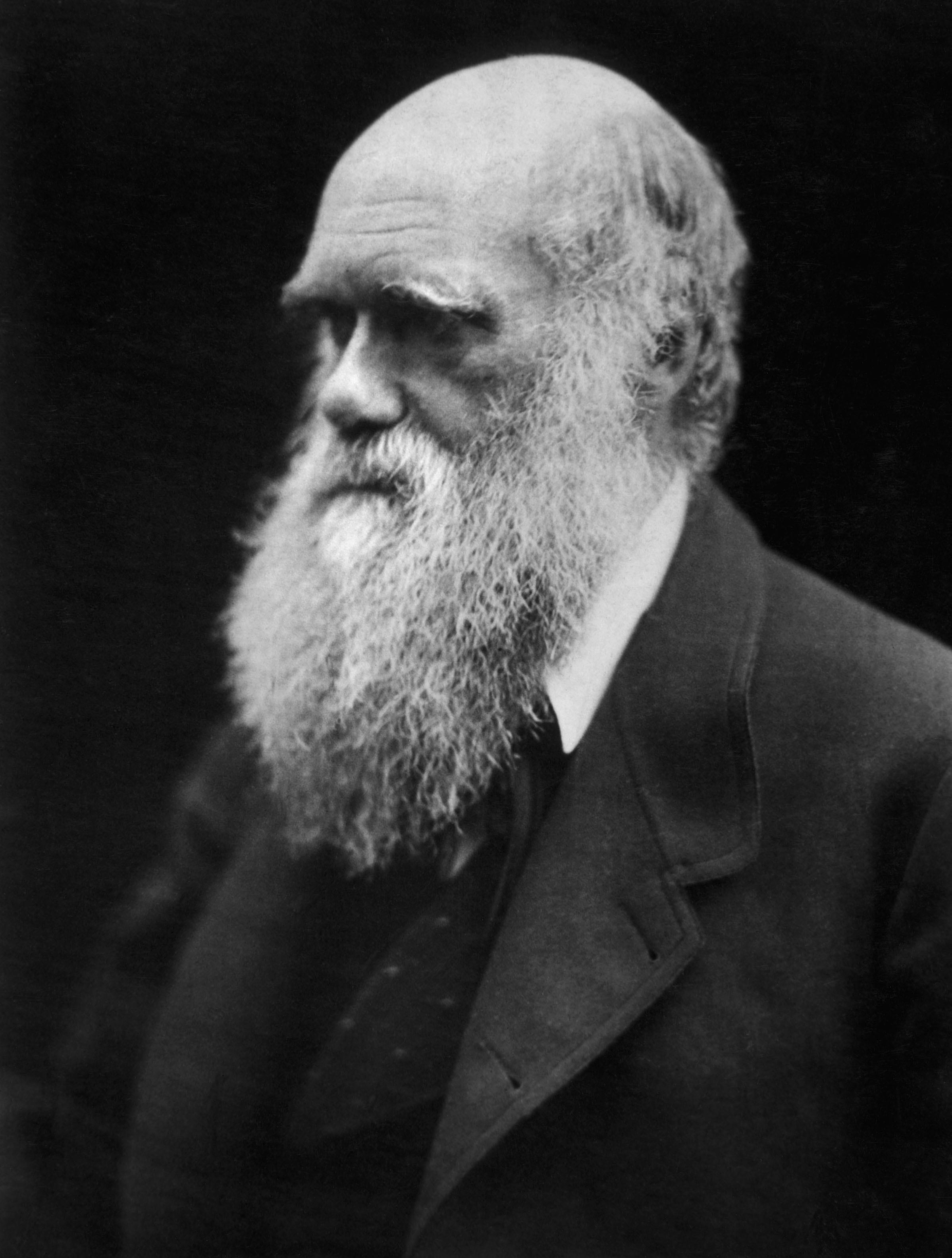 Charles Darwin. Fuente: Wikimedia
