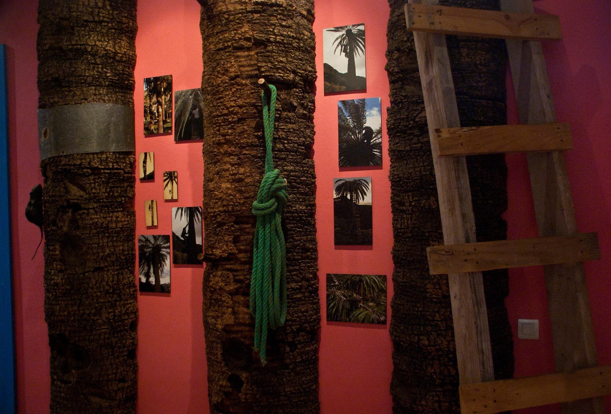 Casa de La Miel. La Palma